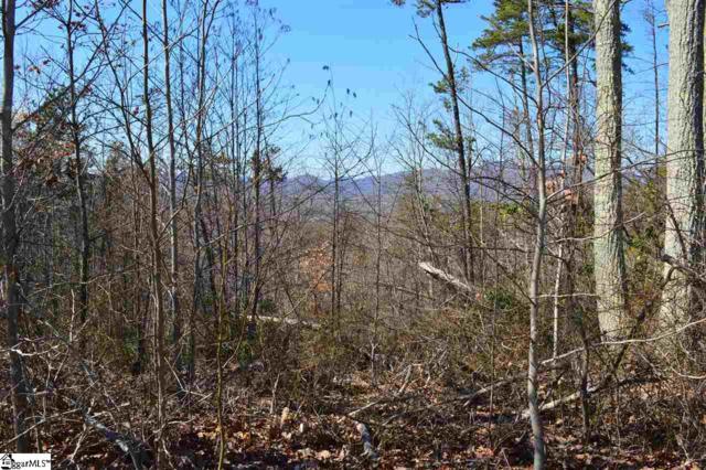 00 Packs Mountain Ridge Road, Taylors, SC 29687 (#1379392) :: The Toates Team