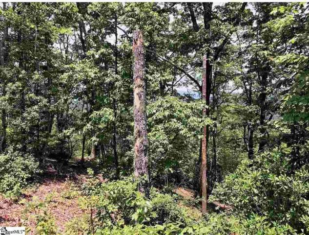 110 Dusky Wing Trail, Marietta, SC 29661 (#1380531) :: Hamilton & Co. of Keller Williams Greenville Upstate