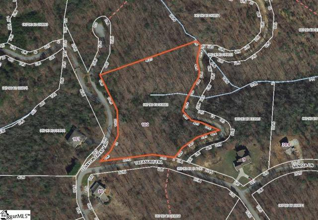 100 Canyon Crest Trail, Cleveland, SC 29635 (#1381097) :: Connie Rice and Partners