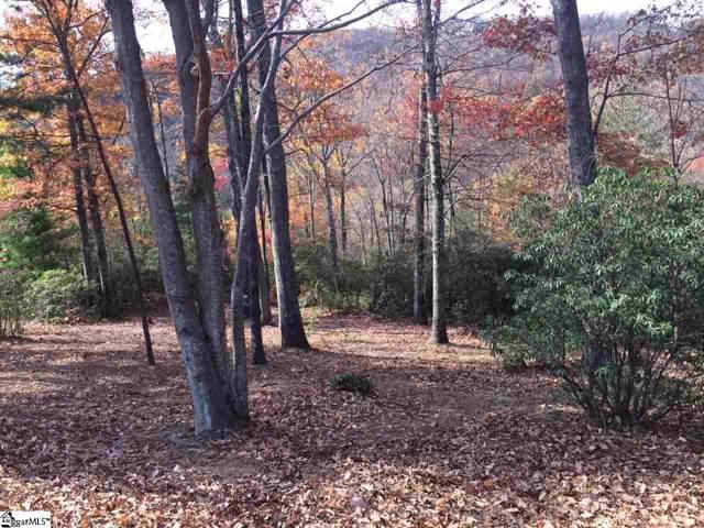Moccasin Flower Trail, Landrum, SC 29356 (#1382768) :: Hamilton & Co. of Keller Williams Greenville Upstate