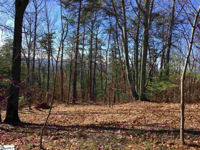 Plumley Summit Road, Landrum, SC 29356 (#1383508) :: Hamilton & Co. of Keller Williams Greenville Upstate