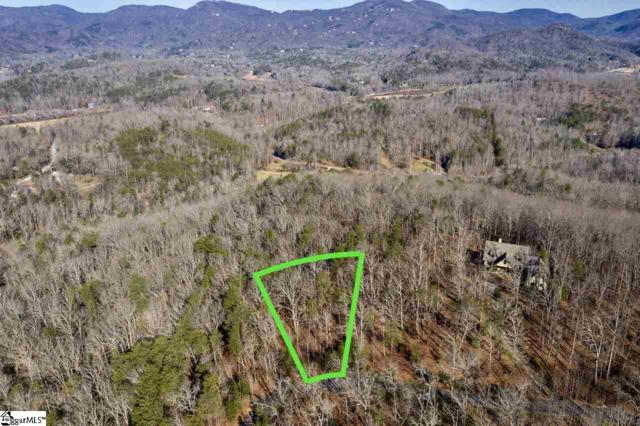 215 Luberon Lane, Travelers Rest, SC 29690 (#1384399) :: Connie Rice and Partners