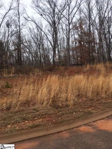 255 Audubon Acres Drive, Easley, SC 29642 (#1384948) :: The Toates Team