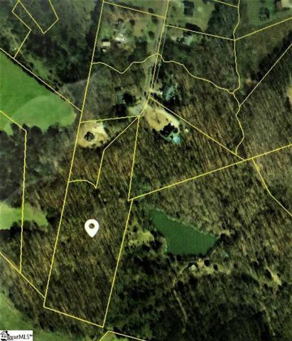 159 N Harper Ridge Drive, Seneca, SC 29678 (#1385978) :: J. Michael Manley Team
