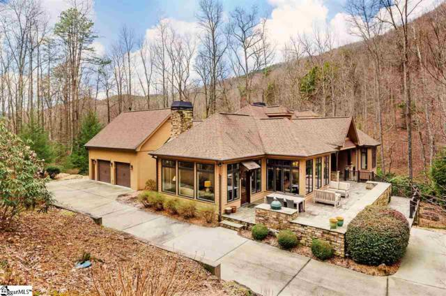 1216 Panther Park Trail, Travelers Rest, SC 29690 (#1386307) :: Hamilton & Co. of Keller Williams Greenville Upstate