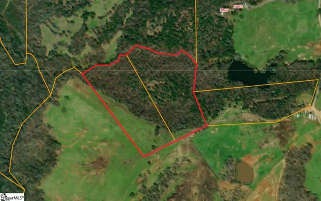 00 Indian Mound Road, Laurens, SC 29360 (#1390569) :: J. Michael Manley Team