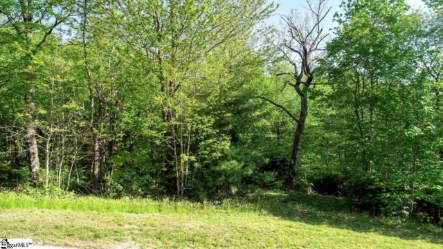 8021 Glassy Ridge, Landrum, SC 29356 (#1391675) :: Hamilton & Co. of Keller Williams Greenville Upstate