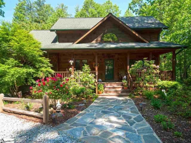 168 Cherry Birch Lane, Saluda, NC 28773 (#1393260) :: The Haro Group of Keller Williams
