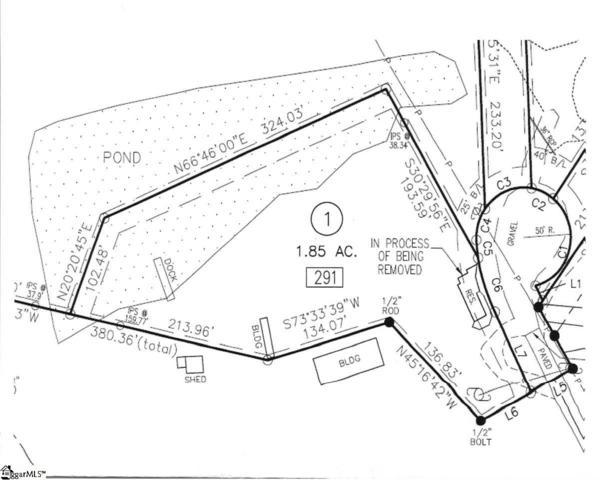 291 Lewis Road, Campobello, SC 29322 (#1393340) :: J. Michael Manley Team