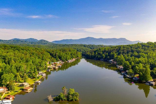 1502 W Lakeshore Drive, Landrum, SC 29356 (#1393577) :: Connie Rice and Partners