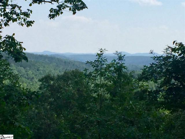 301 Blue Bonnet Trail, Marietta, SC 29356 (#1393623) :: Hamilton & Co. of Keller Williams Greenville Upstate
