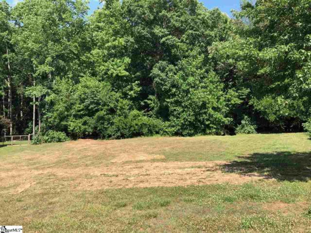 420 Lightwood Farm Road, Woodruff, SC 29388 (MLS #1393680) :: Resource Realty Group