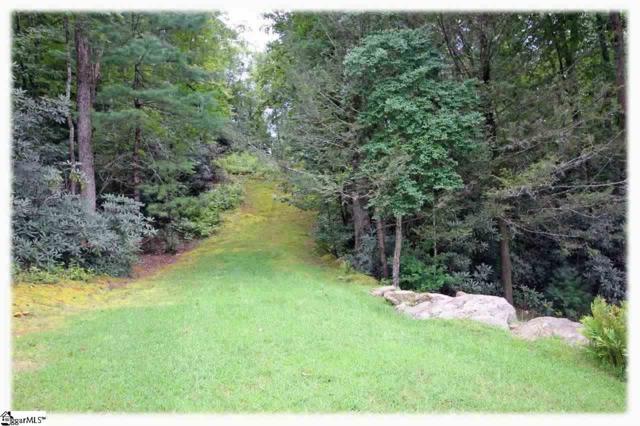 6 Garden Gate Trail, Marietta, SC 29661 (#1394960) :: Connie Rice and Partners