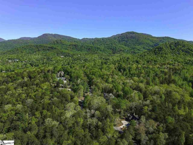 126 Valley Lake Trail, Travelers Rest, SC 29690 (#1394982) :: The Toates Team
