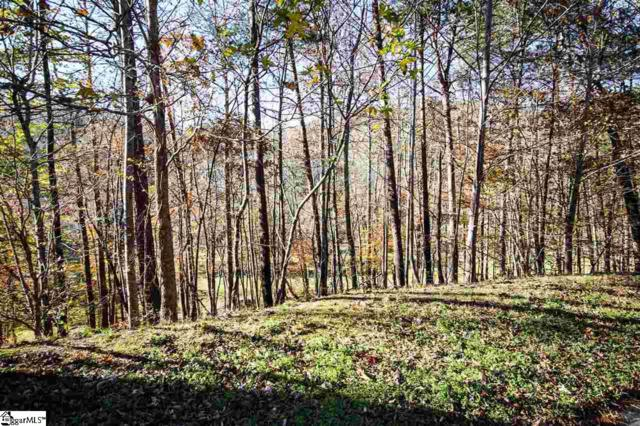 6 Crystal Brook Trail, Travelers Rest, SC 29690 (#1395732) :: Hamilton & Co. of Keller Williams Greenville Upstate