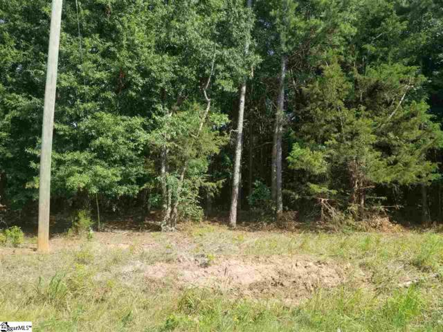 00 Airline Drive, Greenville, SC 29605 (MLS #1396471) :: Resource Realty Group