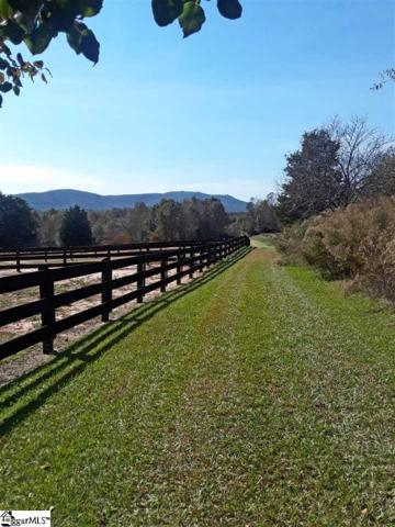 880 Jackson Grove Road, Travelers Rest, SC 29690 (#1396507) :: J. Michael Manley Team