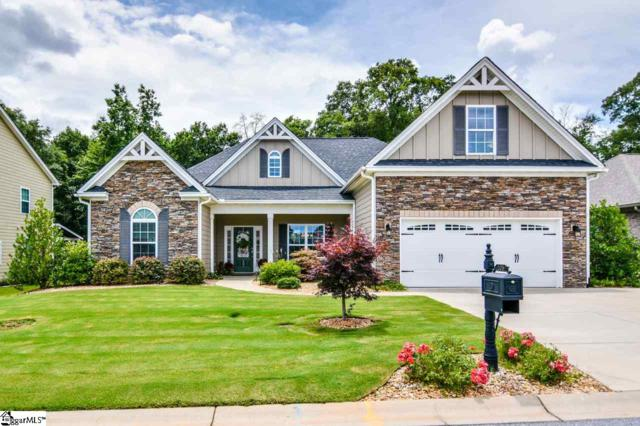 105 Belgian Blue Way, Fountain Inn, SC 29644 (#1397057) :: Connie Rice and Partners