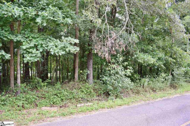 0 Chestnut Road, Landrum, SC 29356 (#1397365) :: The Haro Group of Keller Williams