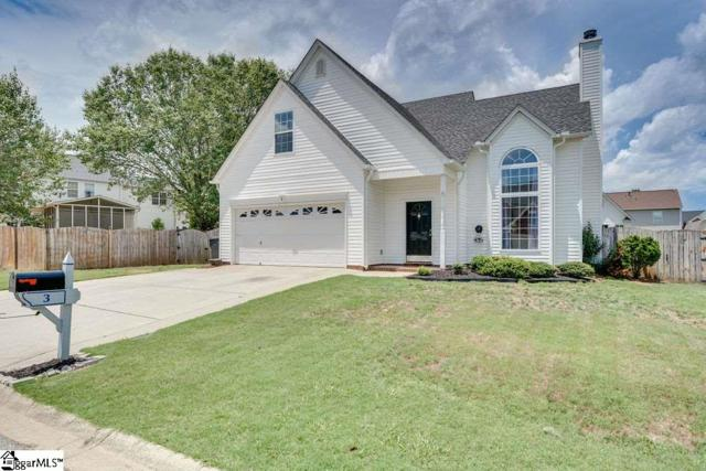 3 Ambrose Trail, Greer, SC 29650 (#1397453) :: J. Michael Manley Team