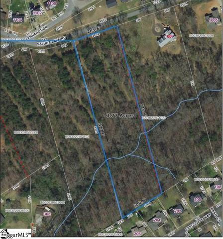 1009 Saluda Lake Road, Greenville, SC 29611 (#1398247) :: The Haro Group of Keller Williams