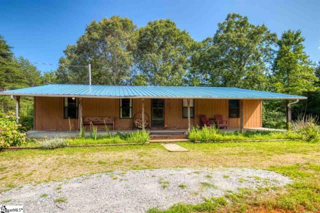 620 Burt Blackwell Road, Mill Spring, NC 28756 (#1399264) :: J. Michael Manley Team