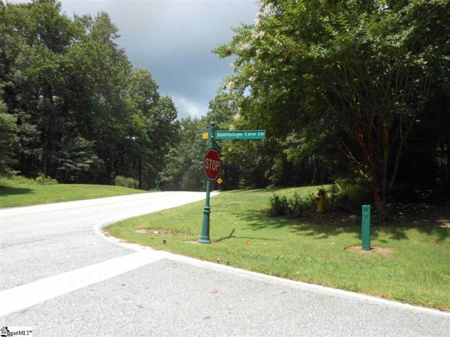 Plumley Summit Road, Landrum, SC 29356 (MLS #1399280) :: Resource Realty Group