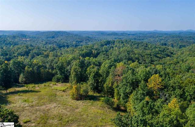 Sawblade Ridge, Marietta, SC 29661 (#1402019) :: Hamilton & Co. of Keller Williams Greenville Upstate