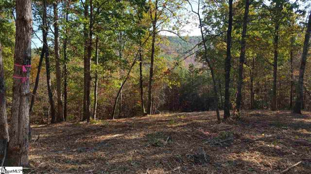 0 Mount Tabor Church Road, Pickens, SC 29671 (#1402476) :: The Toates Team