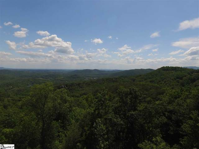 24 Hidden Mountain Way, Travelers Rest, SC 29690 (#1403192) :: Coldwell Banker Caine