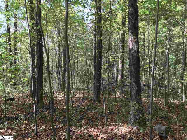 5 Big Pine Rock Way, Landrum, SC 29356 (#1403461) :: Connie Rice and Partners