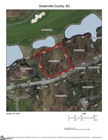 7923 Glassy Ridge Road, Landrum, SC 29356 (#1404460) :: Connie Rice and Partners