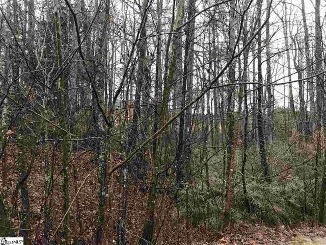 16 Pinerock Drive, Travelers Rest, SC 29690 (#1406400) :: Modern