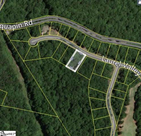 313 Laurel Valley Way, Travelers Rest, SC 29690 (#1406435) :: Modern