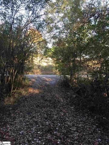 225 Brook Meadow Lane, Pickens, SC 29671 (#1406451) :: The Haro Group of Keller Williams