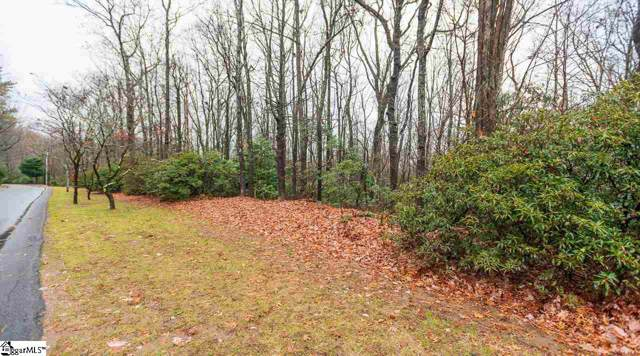 Lot 120 Cliff Ridge Drive, Cleveland, SC 29635 (MLS #1407596) :: Resource Realty Group