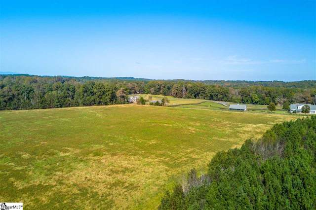 1 Hickory Grove Church Road, Columbus, NC 28722 (#1407677) :: Coldwell Banker Caine