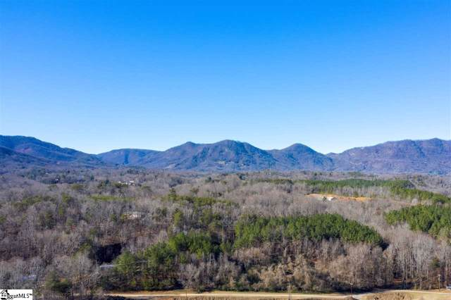 00 Grey Fox Lane, Tryon, NC 28782 (#1410108) :: The Toates Team
