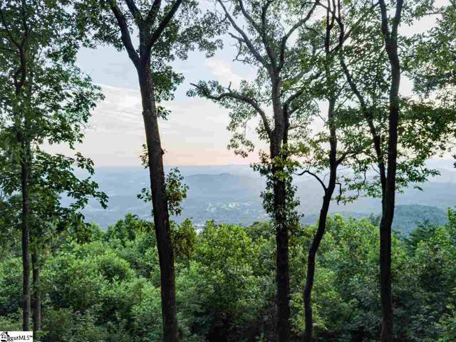 200 Night Crest Trail, Travelers Rest, SC 29690 (#1410331) :: Hamilton & Co. of Keller Williams Greenville Upstate