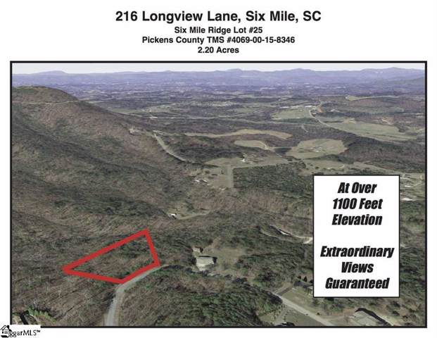 216 Long View Lane, Six Mile, SC 29682 (MLS #1410525) :: Resource Realty Group