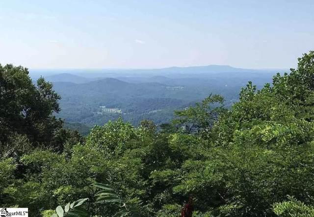 1511 Panther Park Trail, Travelers Rest, SC 29690 (#1410543) :: J. Michael Manley Team