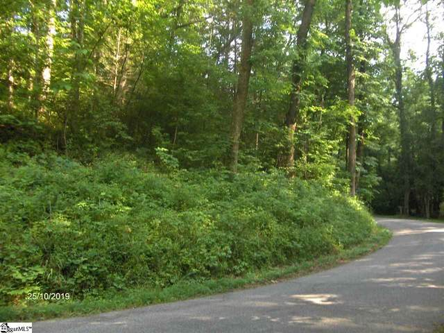 00 NW Raines Road, Easley, SC 29640 (#1410637) :: The Haro Group of Keller Williams