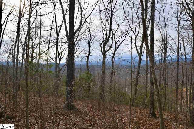 130 Cherokee Rose Trail, Marietta, SC 29661 (MLS #1411046) :: Resource Realty Group