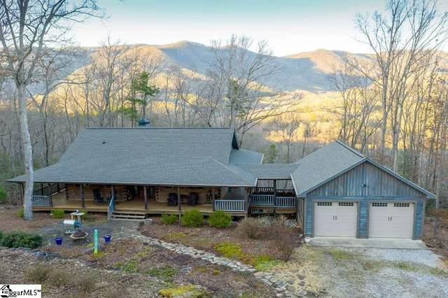 162 Cold Mountain View, Cleveland, SC 29635 (#1411616) :: Hamilton & Co. of Keller Williams Greenville Upstate