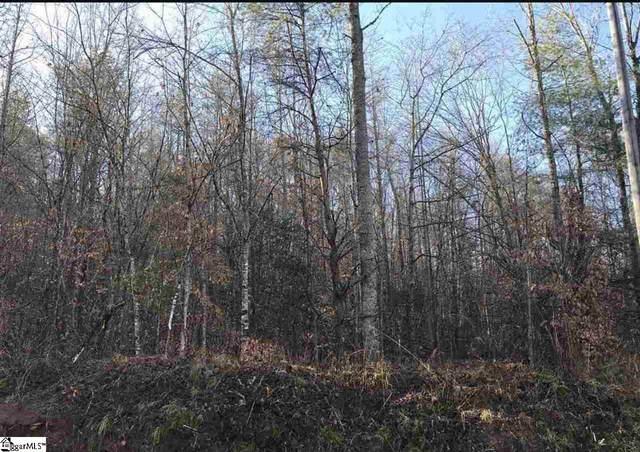 170 Lake Circle Drive, Marietta, SC 29661 (#1412142) :: Hamilton & Co. of Keller Williams Greenville Upstate