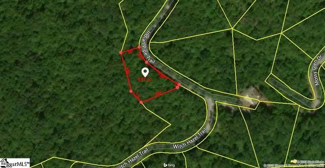 139 Indian Pipe Trail, Landrum, SC 29356 (#1413102) :: Hamilton & Co. of Keller Williams Greenville Upstate
