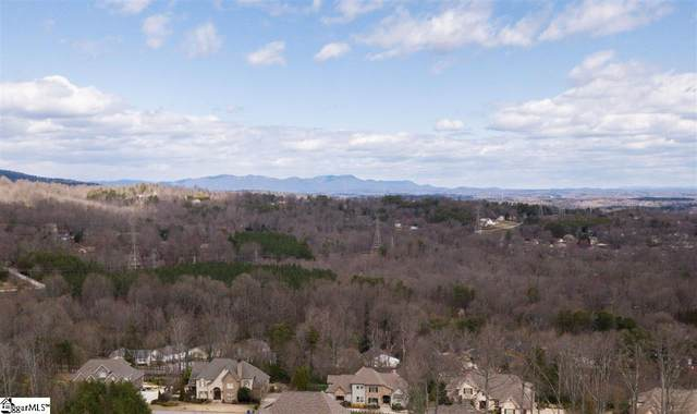 10 Monet Drive, Greenville, SC 29609 (#1413996) :: Connie Rice and Partners