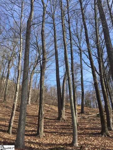 Catnip Trail, Landrum, SC 29356 (#1414617) :: Hamilton & Co. of Keller Williams Greenville Upstate