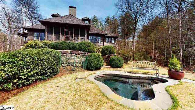 104 May Apple Lane, Sunset, SC 29685 (#1415230) :: Hamilton & Co. of Keller Williams Greenville Upstate