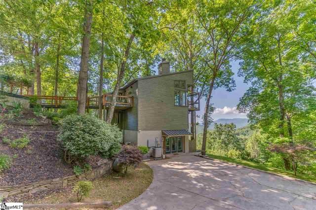 855 White Oak Mountain Road, Columbus, NC 28722 (#1418475) :: J. Michael Manley Team
